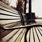 &quot;park bench&quot; - Rideau river ottawa by Liamspero