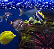 <º))))>< <º))))>< Diving Looking At Those Beautiful Fish<º))))>< <º))))><  by ✿✿ Bonita ✿✿ ђєℓℓσ
