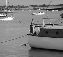 High Tide Woodbridge by TonyGeary