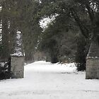 Gates in winter by aldfreckian