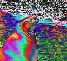 Tie-dyed seal by KDskier