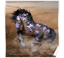 The Wild,The Free Painted Horse Poster