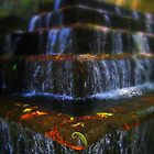 Leaves in the Fountains in Uruapan, Mexico by Cristy Warnock