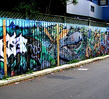 May Lane #9 (May 2011) by Janie. D