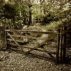 The Woodland Gate by Catherine Hamilton-Veal  ©