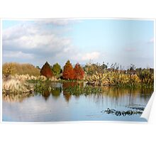 Autumn on Lake Wendouree Poster
