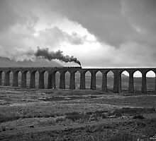 Ribblehead Viaduct by Steve  Liptrot