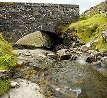 Bridging the Gap by Martina Fagan