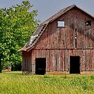 One Eyed Barn by Sheryl Gerhard