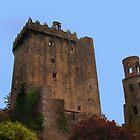 Blarney Castle by artstoreroom