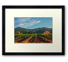 California Vineyard Framed Print