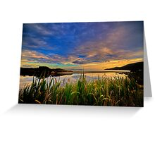 Captain Cook Creek Reeds HDR - Bruny Island, Tasmania, Australia Greeting Card