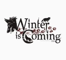 Winter is Coming by TheRift