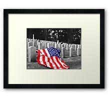 Fallen Glory-The Presidio-San Francisco, CA Framed Print