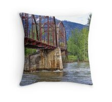 Flood Watch Throw Pillow