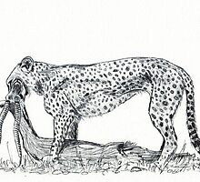 A Tear for Survival by Maree  Clarkson