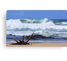 wild surf ... Canvas Print