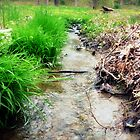 her fairy stream by greg angus