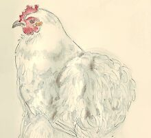 Silky, the hen by Maree  Clarkson
