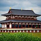 Palace Nara, Japan by xavi8921