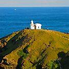 Port's Lighthouse by Penny Smith