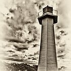 Cleveland Point Lighthouse by Tony Steinberg
