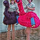 EMU JOCKEYS by Helen Akerstrom Photography