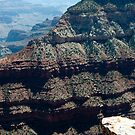 Canyon Skirts Near Granite Gorge & Yaki Point by phil decocco