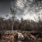 Malham Tarn National Nature Reserve by Neil Messenger