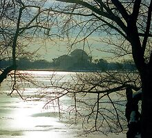 Icy Sunrise in DC  by Alberto  DeJesus