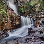 Robin Falls by Jodie Williams