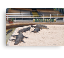 Welcome To Gatorland Canvas Print