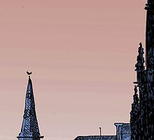 Edinburgh Skyline by Paul Sorensen