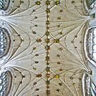 Cathedral Ceiling by John Thurgood