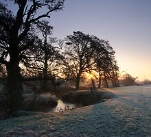 Water meadow sunrise by Christopher Cullen
