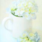 Blue Hydrangeas in a Jug  by Nicola  Pearson