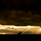Riding the Storm by Eddie Howland