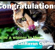 CatRaven Challenge Entry by TallulahMoody
