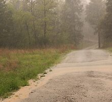Ozark Country Rain by NatureGreeting Cards ©ccwri