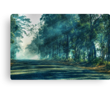 A Quiet Country Road In My Hometown Canvas Print