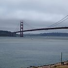 Golden Gate Bridge from North by kevmarcn