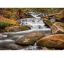 Flow Photographic Print