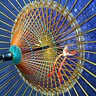 parasol up close by SereneBear