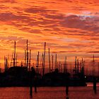 Sunset over Scarborough boat harbour by sueyo