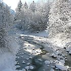 Winter stream by eugenz