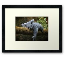 Back to Sleep Framed Print