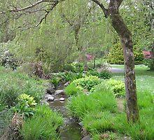 Springtime in Killarney by greg fitzgerald
