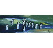 Penguin Chaos Photographic Print