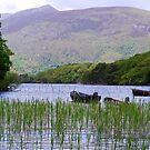 Killarney Boats by Paul Finnegan