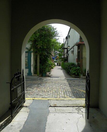 Through the Gateway by Judy Wanamaker